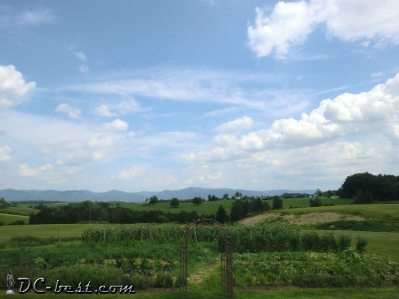 CrossKeys Vineyards, Virginia